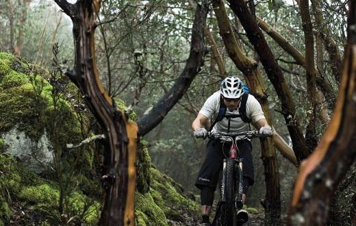 Biken wie ein Weltmeister – Mit dem ALPINA PHEOS trumpft jeder groß auf