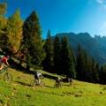 Mountainbiken im malerischen Eggental - Fotocredit: © Manfred Stromberg