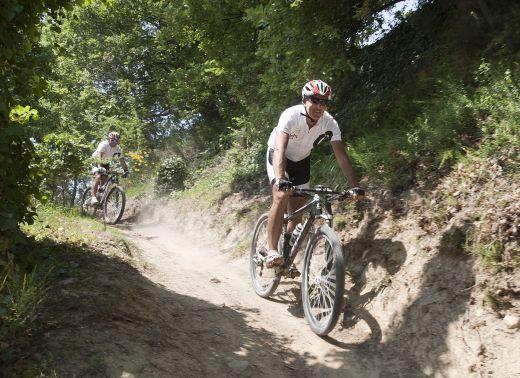Mountainbiken durch den Wald - Foto: Italy Bike Hotels